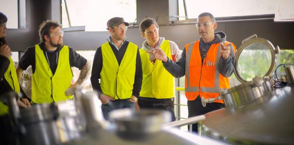 Tui Brewery Tours & Tasting